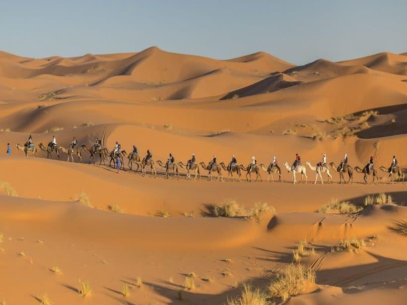Camel-Caravan-Merzouga-Desert