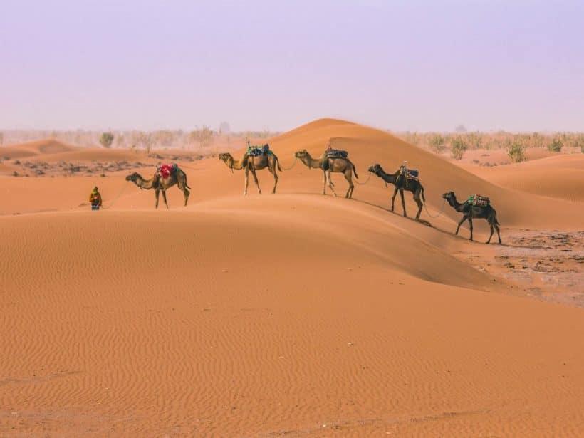 camel-ride-morocco-desert-tour